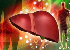 Жировой гепатоз печени. Признаки. Как выявить болезнь печени ?