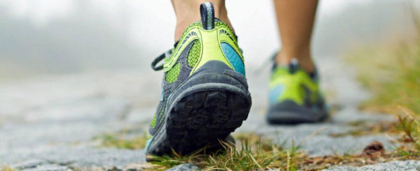 Почему похудение обязательно начинать не с питания, а с нормализации двигательной активности ?