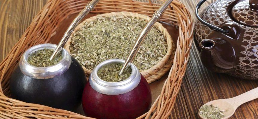 Чай мате  — энергетический напиток с целебным действием